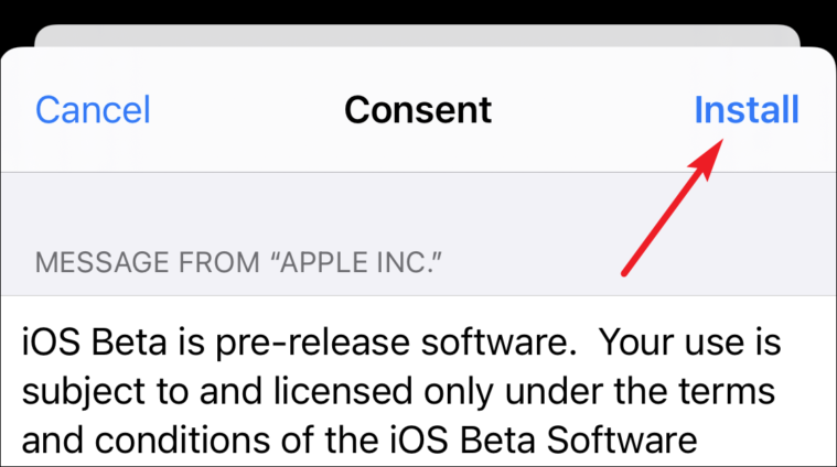 consent to download and install ios 15 beta
