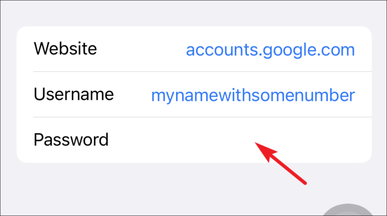 enter passwords from iCloud keychain from iPhone