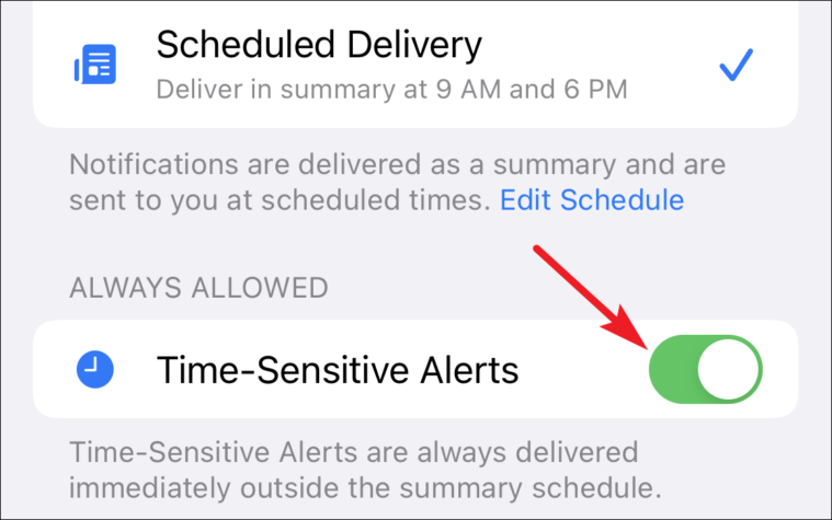 enable time-sensitive notification for an app